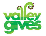 valley gives logo for web